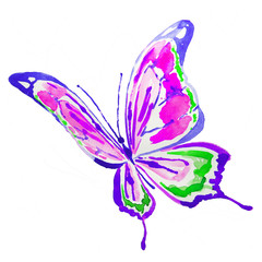 beautiful violet butterfly,watercolor,isolated on a white