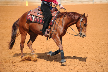 A side view of a rider on horseback