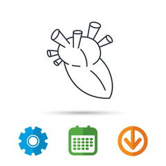 Heart icon. Human organ sign. Surgical transplantation symbol. Calendar, cogwheel and download arrow signs. Colored flat web icons. Vector