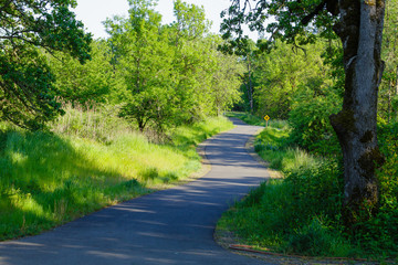 Bike Path in Eugene Oregon