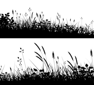Grassy foregrounds