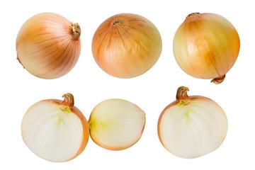 Set of fresh onion isolated on white background.