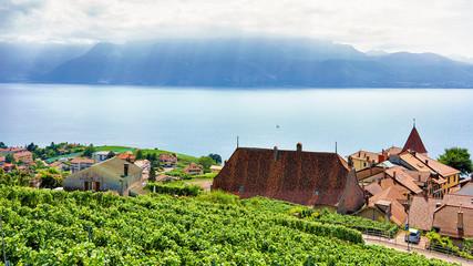 Landscape of Lavaux Vineyard Terraces hiking trail in Switzerland