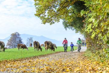 gemeinsame Radtour mit dem Sohn