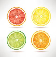lime, lemon, orange, grapefruit slices