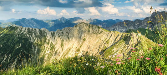Wall Mural - Great view to mountains in beautiful light. Flowers and grass.