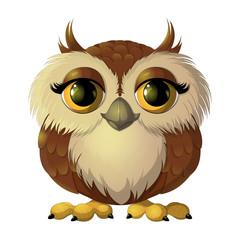 Pretty brown owl