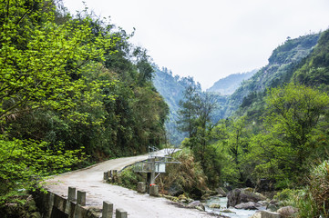 The road in mountains