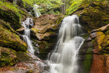 Spring waterfall streams in the forest