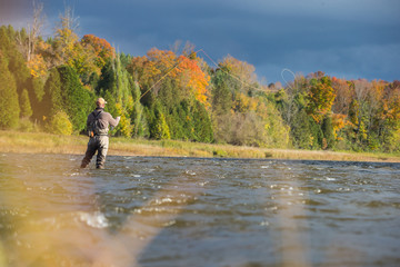 Man fly fishing in the fall in a river