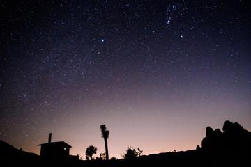 Nighttime Silhouette in the desert