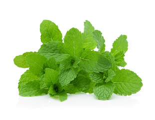 Mint leaves isolated on white background.