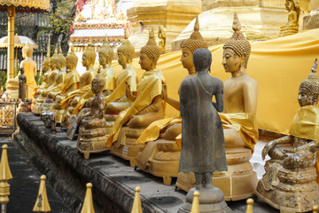 Back of a dark brown  Buddha statue with a lot golen buddha statues.