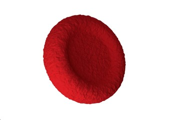 red blood cells responsible for oxygen carrying over, regulation pH blood, a food and protection of cages of an organism.