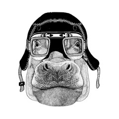 Vintage images of Hippo for t-shirt design for motorcycle, bike, motorbike, scooter club, aero club