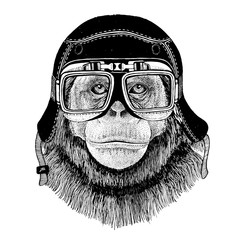 Vintage images of Shimans monkey for t-shirt design for motorcycle, bike, motorbike, scooter club, aero club