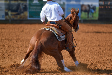 A rear view of western rider sliding the horse in the dirt