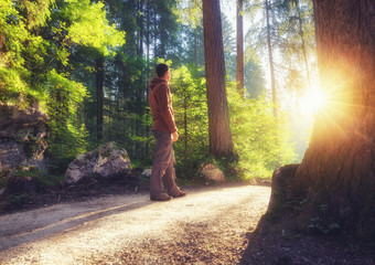 Man standing at the sunny forest path