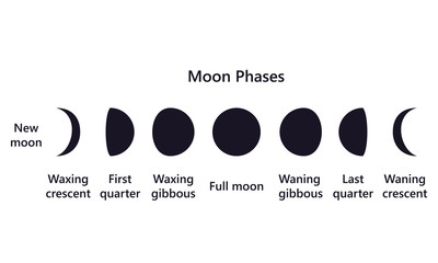 Moon phases on white background text