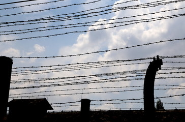 many lines of dangerous and sharp barbed wire
