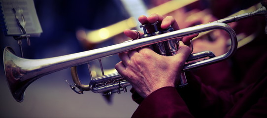 trumpeter plays his trumpet in the band during live concert Wall mural