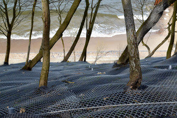 Reinforcing mesh with anchor fastening to the slope on the shore of the Baltic Sea.  Svetlogorsk, Kaliningrad region