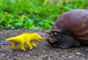 Yellow dinosaur puppet and Giant snail in garden. Funny monsters macro photo.