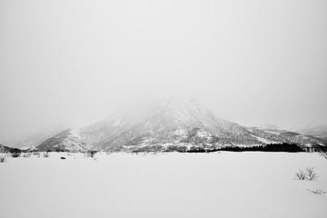 Norway, Lofoten, Snowcapped mountain in fog