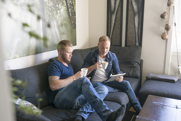 Norway, Couple using tablet and drinking coffee on sofa