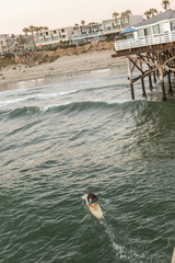 USA, California, San Diego, Surfer on water with pier and houses on beach in background