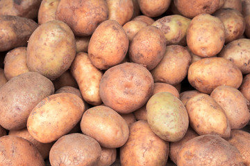 Pile of potato closeup image. Brown and yellow vegetables picture.