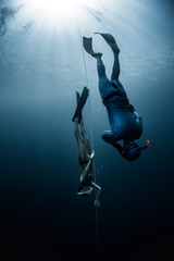Wall Mural - Free diver ascending along the rope in the depth
