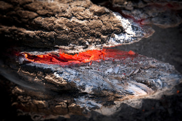 Teelah Fire