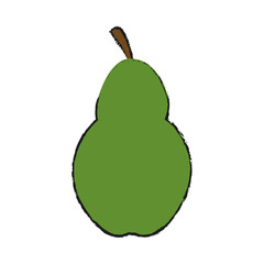 pear fruit icon over white background. vector illustration