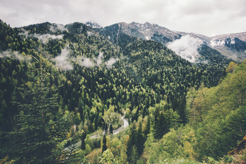 Forest Mountains and clouds Landscape Travel aerial view serene scenery wild nature calm summer atmospheric scene