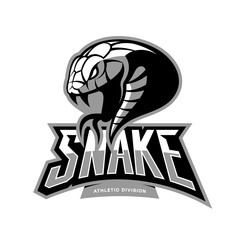 Furious snake sport vector logo concept isolated on white background. Modern professional team badge design.