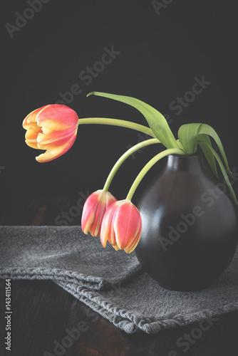 drei tulpen in der vase tulipa stockfotos und. Black Bedroom Furniture Sets. Home Design Ideas