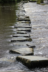 stepping stone in river