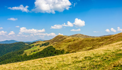 Carpathian Mountain Ridge in late summer