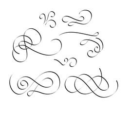 flourish swirl is vintage vector elements