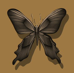 graphic butterfly on a wall in gold and black shades