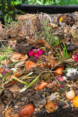 Assorted kitchen and garden organic waste showing in an opened compost silo