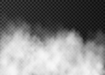 Garden Poster Smoke White fog or smoke isolated on dark transparent background.