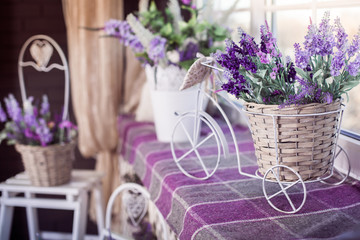 Lavender flowers in small decorative bicycle pot stand on the windowsill. Spring interior design of room. Side view.