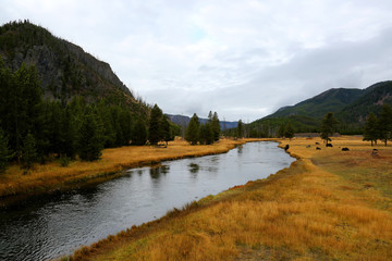 Wall Mural - Mountain River with Fall Colors