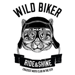 Vintage images of fishing cat for t-shirt design for motorcycle, bike, motorbike, scooter club, aero club