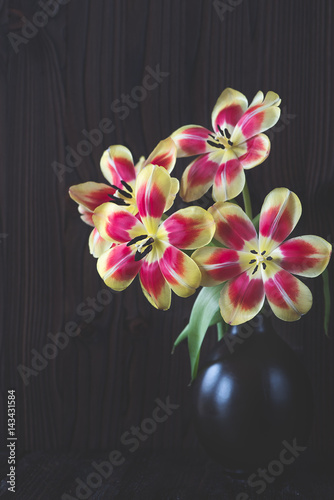 tulpen in der vase tulipa stock photo and royalty free. Black Bedroom Furniture Sets. Home Design Ideas