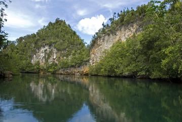 Lush green forest and limestone coastline of Gam Island, Raja Ampat Indonesia.