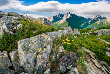 Composite image of dandelions among the rocks in High Tatra Mountain ridge in the distance. Beautiful landscape on summer day with blue sky and clouds