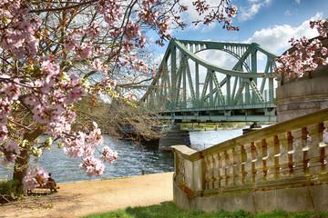 Frühling an der Glienicker Brücke